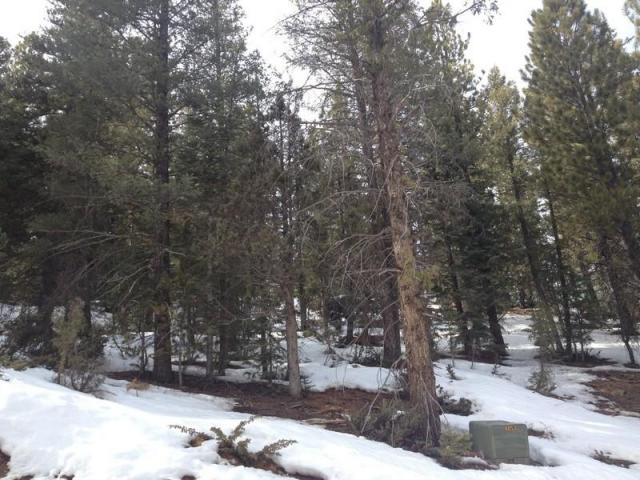 Duck Creek Real Estate Swains Creek Lot For Sale Free