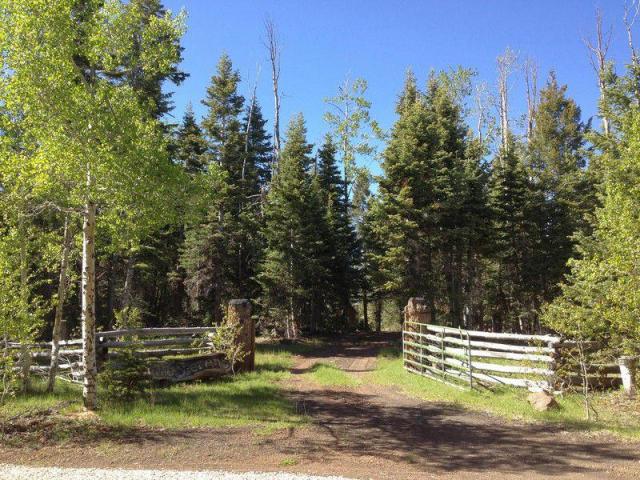 Cabin For Sale In Gated Area On Acreage Near Navajo Lake