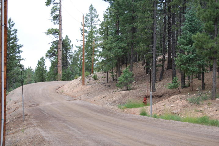 Duck Creek Real Estate, Swains Creek land for sale