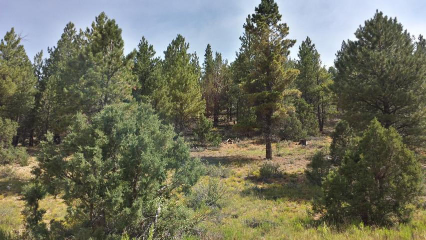 Southern Utah Mountain Property For Sale