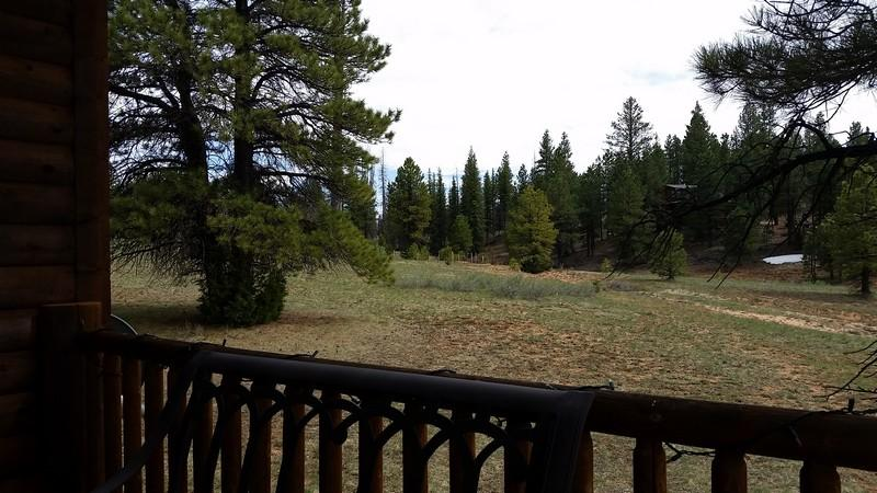 Duck Creek Real Estate, Swains Creek Cabin for sale