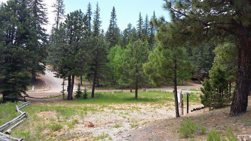Swains Creek cabin site for sale