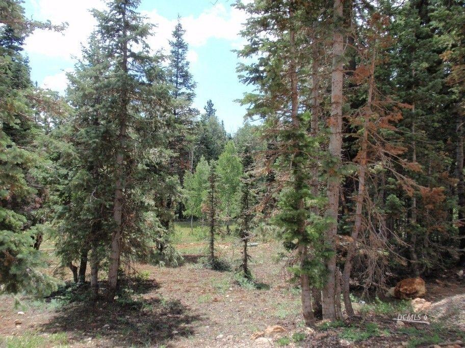Duck Creek lot for sale in Color Country Estates