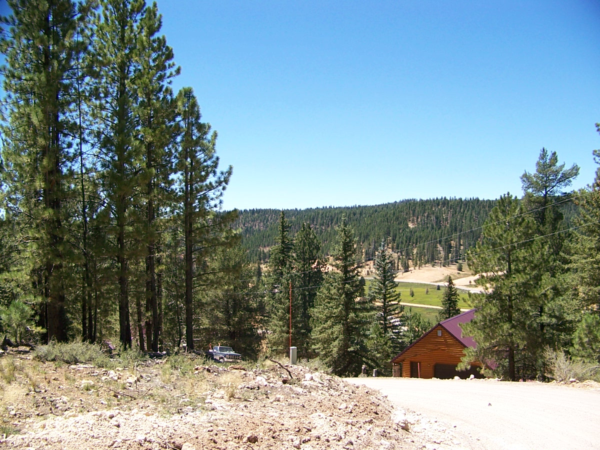 duck creek village hispanic singles Anyone looking for places to go on vacation should definitely give arkansas a look helena lake village monticello pine bluff stuttgart.