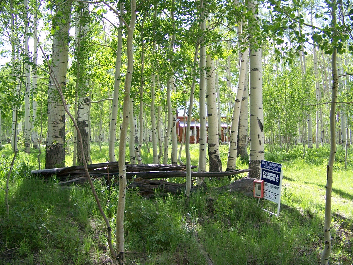 Duck Creek Utah Real Estate Cabin For Sale In Englestead